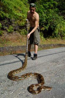 Matthieu Berroneau Python