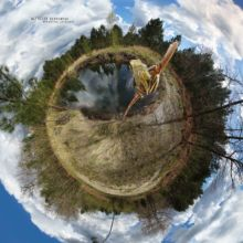 Hyla molleri, Rainette ibérique, Iberian tree frog, Ranita de San Antón, Matthieu Berroneau, France, planet, globe, rond, world, univers, planète, monde, rond, ball