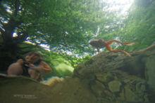 Rana pyrenaica, Pyrenean frog, Grenouille des Pyrénées, France, Matthieu Berroneau, underwater