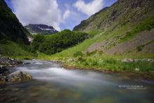 stream, ruisseau, rivière, habitat, landscape, paysage, montagne, mountain, Pyrénées, Matthieu Berroneau
