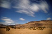 Réservoir marocain, piège à reptiles, Maroc, Morocco, Matthieu Berroneau, habitat